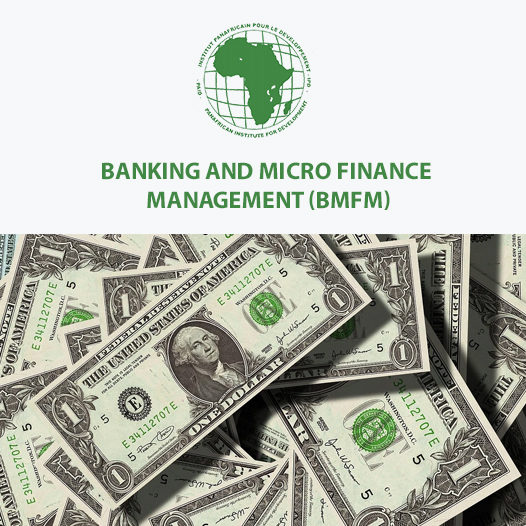 BSC. BANKING AND MICRO FINANCE MANAGEMENT (BMFM)